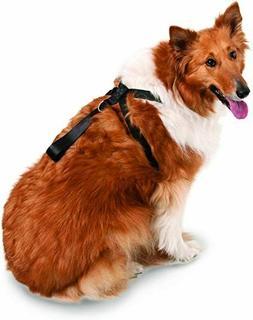 Petmate 11474 Seat Belt Travel Harness for Pets, X-Large, Bl