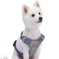 Blueberry Pet 3M Reflective Colored Stripe Padded Dog Harnes