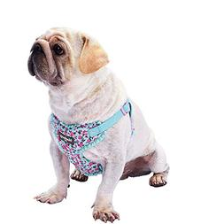 Blueberry Pet 6 Patterns Soft & Comfy Spring Made Well Cute