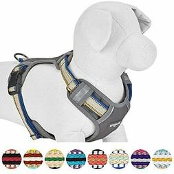 Blueberry Pet 3M Reflective Multi-Colored Stripe Dog Harness