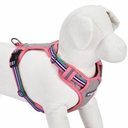 Blueberry Pet Soft Comfy 3M Reflective Multi-colored Stripe