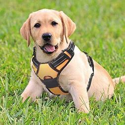 Rabbitgoo Front Range Dog Harness No-Pull Pet Adjustable Out