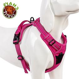 Chai's Choice Outdoor Adventure Dog Range Harness