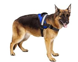 Big Dog Soft Reflective No Pull Blue Harness size XL 36-46in
