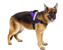 EXPAWLORER Big Dog Soft Reflective No Pull Purple Harness Si