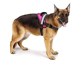 Big Dog Soft Reflective No Pull Pink Harness size XL 36-46in
