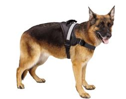 EXPAWLORER Big Dog Harness - Soft Reflective No Pull Black S
