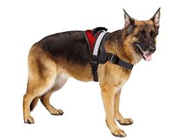 Big Dog Soft Reflective No Pull Red Harness Size M 20-26inch