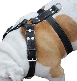 Black Genuine Leather Dog Harness Large. 30-35 Chest, 1.5 Wi