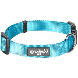 Blueberry Pet 32 Colors Classic Dog Collar, Medium Turquoise