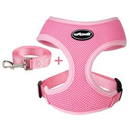 BINGPET Small Dog Harness Leash - Soft Puppy Vest Cat, Pink