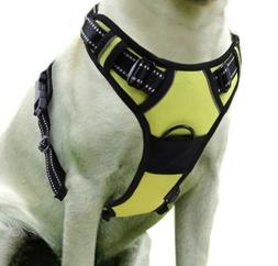 Rabbitgoo Dog Harness No-Pull Pet Adj 3M Reflective Oxford M