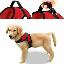 Copatchy dog harness no-pull pet harness adjustable Reflecti