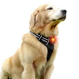Rabbitgoo LED Dog Harness - USB Rechargeable - Illuminated N