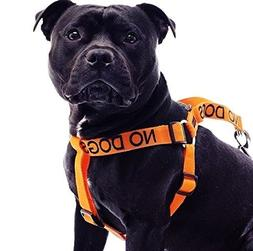No Dogs Orange Color Coded Alert L-XL Non pull Dog Harness