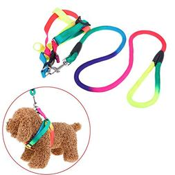 365Cor - Double Strand Rope Large Dog Leashes Round Nylon Bu