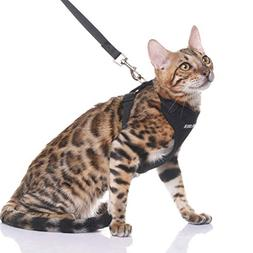EXPAWLORER Escape Proof Cat Harness with Leash - Best Cat Sa