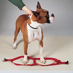 Guardian Gear Nylon 2-Step Dog Harness with Nickel-Plated Sw