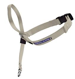 PetSafe Gentle Leader Head Collar with Training DVD, MEDIUM