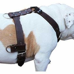 """Genuine Leather Dog Harness Large 28""""-35"""" Chest, 1.3"""" Wide A"""