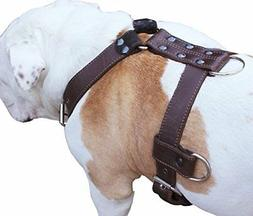 """Genuine Leather Dog Harness X-Large 33""""-40"""" Chest, 1.3"""" Wide"""