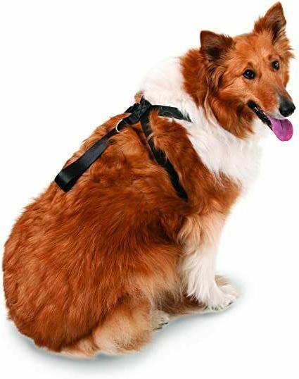 11474 seat belt harness pets