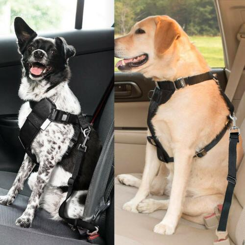 2 Pet Safety Car Seat Harness