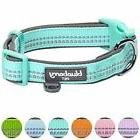 Blueberry Pet 6 Colors Soft & Comfy Spring 3M Reflective Pas