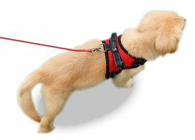 Copatchy No Adjustable Dog Handle