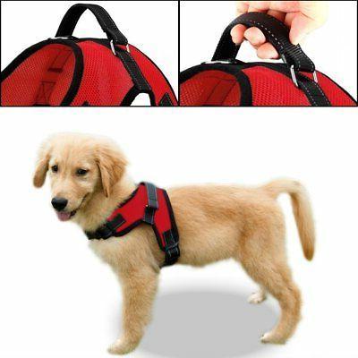 Copatchy Adjustable Dog Handle