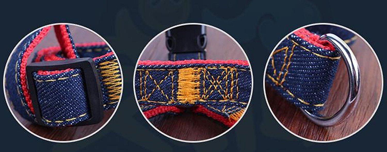 Lifepul Dog Collar Set Duty Set Blue &