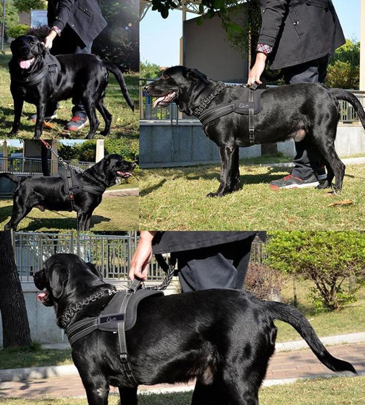 Lifepul No Vest Harness - Dog Body Extra
