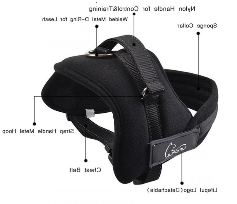 Lifepul No Vest Harness - Body Extra