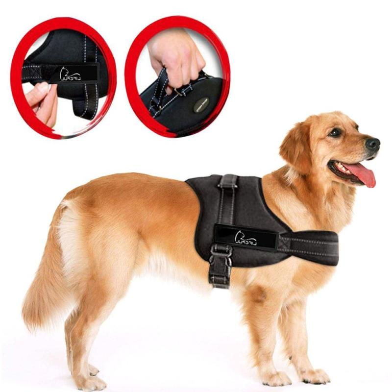 Lifepul No Pull Dog Vest Harness - Dog Body Padded Vest Size