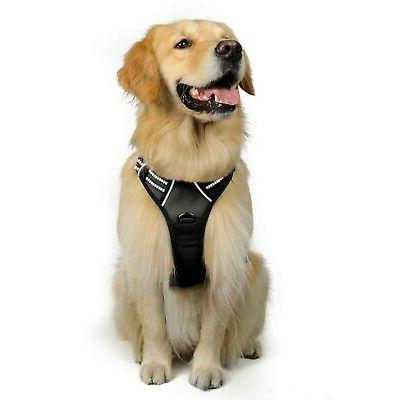 Rabbitgoo Front Range Dog Harness No-Pull Pet Harness Adjust