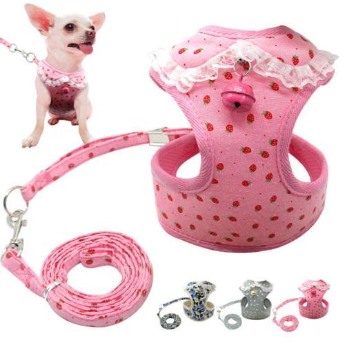 Adjustable Mesh Dog Harness & Dog Leash Set Small Dog Harnes