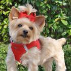 American River Ultra Choke-Free Mesh Dog Harness by Doggie D