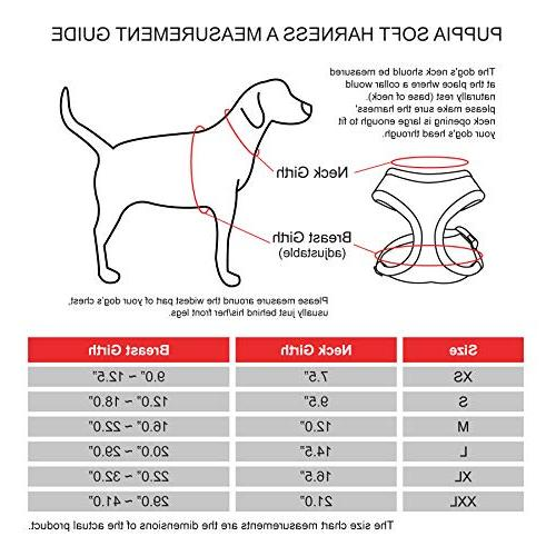 Authentic Soft Dog Harness, -