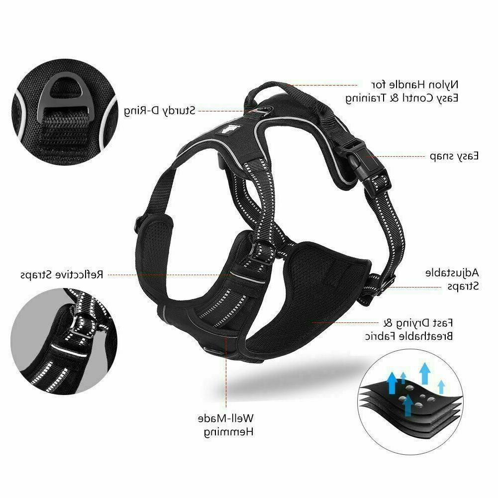 Big Dog Pull Adjustable Reflective Walk