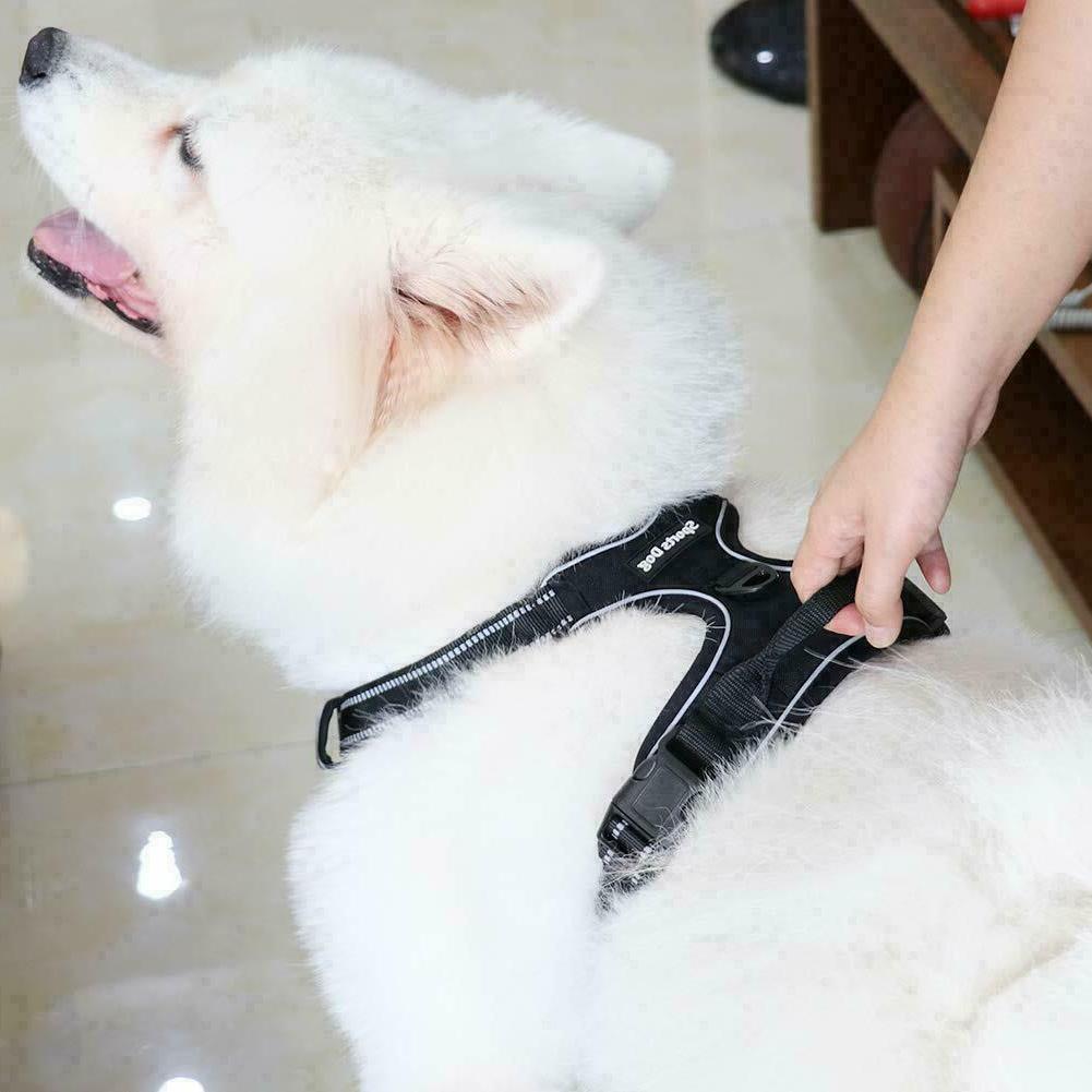 Pull Pet Vest Reflective