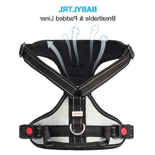 Babyltrl Big No-Pull Harness Soft Dogs