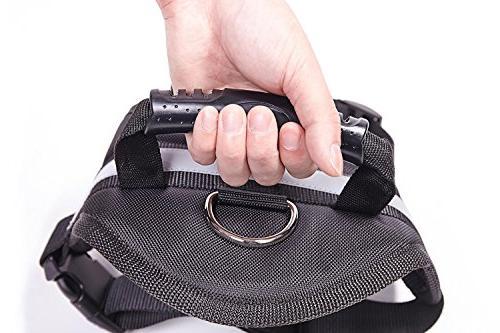 EXPAWLORER Big Dog Harness - Soft No Pull 26-36 inch