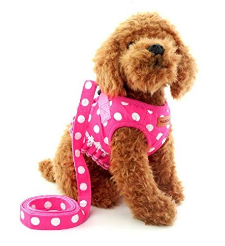 Brother cat Small Dog/Cat Dots Harness Leash Set Mesh Padded Pull Pink M
