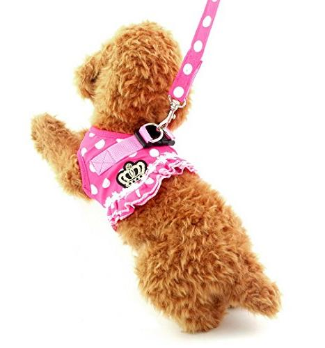 Brother cat Small Dog/Cat Vest Harness Leash Set Padded No Pink