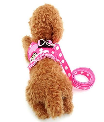 Brother Small Dog/Cat Dots Harness Leash Set Padded No Lead Pink
