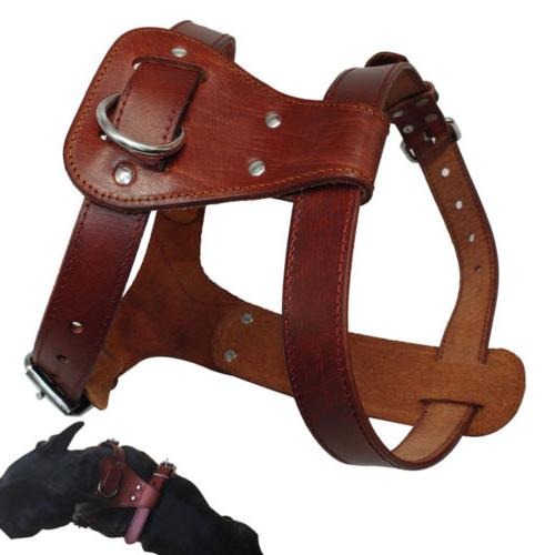 brown large leather dog harness small
