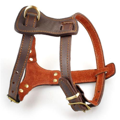 Brown Leather Dog Harness Heavy Duty for Small Large Dogs Wa