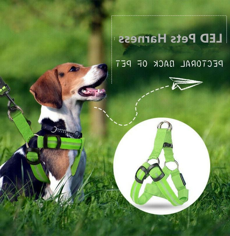 Comfort Control Dog Harness LED Pets Walking Accessory Colla