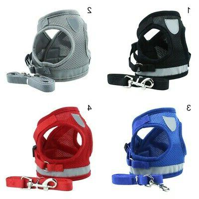 Harness and Dog Cat Small Strap