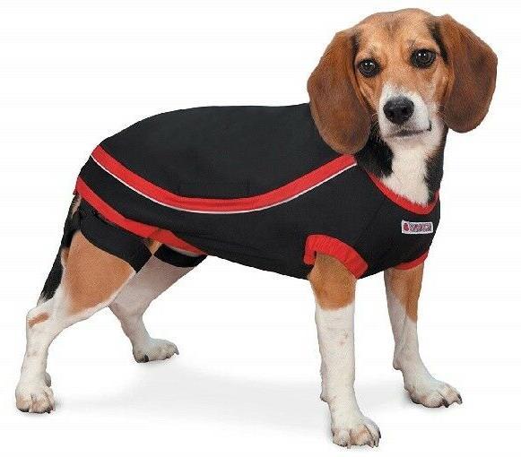 KONG Dog Anxiety - Car Travel Thunder CLEARANCE